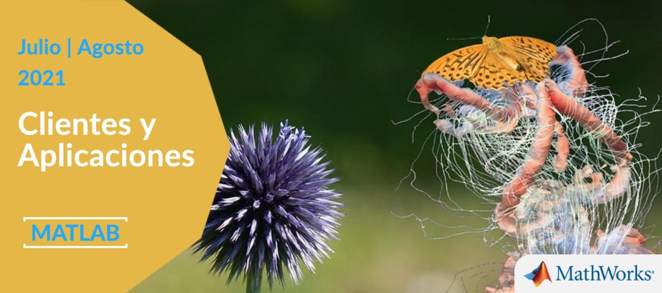 La dinámica de fluidos ayuda a demostrar por qué revolotean las mariposas